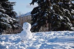 Bonhomme souriant/Friendly Snowman (bob august) Tags: winter snow canada snowman nikon montral couleurs hiver qubec neige janvier bonhommedeneige 2016 villeray d90 parcjarry montreal nikkor18135mm nikond90 aperture3 2016rpdaoust