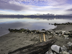 Warm, Still and Dull (Tony Tomlin) Tags: ocean canada mountains fog sand bc logs crescentbeach