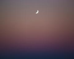 Apogee. (jameslano) Tags: sunset moon colors orlando florida moonrise