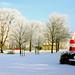 Winter im Kurpark Cuxhaven