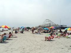 Busy Beach (Brundlefly85) Tags: summer dog sun art beach dogs beautiful photo sand colorful nj sunny wildwood summers 2015
