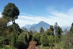 Pacaya, Guatemala, December 2015