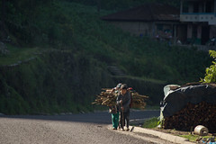 Workhard (raulmadrid1) Tags: travel mxico nikon roadtrip adventure jungle chiapas tzotzil sancristbal
