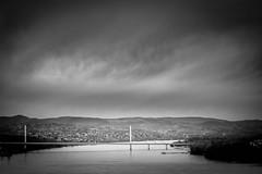 B&W bridge (freetimephoto) Tags: bw black water monochrome river landscape 50mm nikon duna vignetting danube novisad vojvodina dunav vajdasag d7100