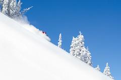 seeding the clouds of cold smoke. (nevadoyerupaja) Tags: winter friends usa mountain snow cold creek nikon skiing freezing powder beaver backcountry wyoming buck range backcountryskiing nikond7000