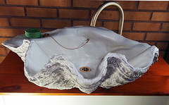 Grey Giant Clam Shell SINK 9 (LittleGems AR) Tags: ocean sea sculpture sun beach home statue giant bathroom shower aquarium soap sand bath sink natural contemporary unique decorative shell craft style toilet towel clam basin special shampoo taps wash ornament gift seashell pearl nautical reef decor spa luxury opulent fossils oneoff clamshell mollusks cloakroom bespoke tridacna sculpt crafted gigas facetowel