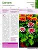 Комнатные и садовые растения от А до Я 44 15