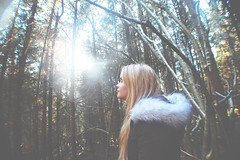 (nic lawrance) Tags: trees light people sun nature girl woodland shine cotswolds gloucestershire pines figure shape