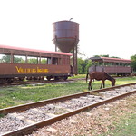 "Horse on the Train Tracks <a style=""margin-left:10px; font-size:0.8em;"" href=""http://www.flickr.com/photos/14315427@N00/25085742581/"" target=""_blank"">@flickr</a>"