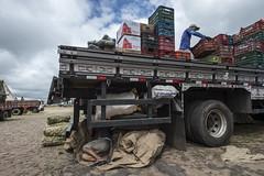 CEASA (felipe sahd) Tags: city cidade brasil ceará trabalho trabalhador ceasa serradaibiapaba tianguá