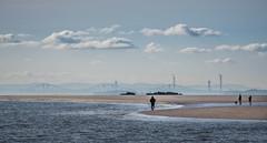 Low Tide (ianrwmccracken) Tags: bridge sea beach river coast sand fife forth pettycur