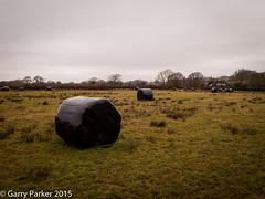 Hay bales (gljp411) Tags: field sussex bales