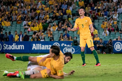 750_3163.jpg (KevinAirs) Tags: world cup football kevin mark fifa soccer c au australia jordan newsouthwales moorepark milligan qualifier socceroos markmilligan fifaworldcupqualifier kevinairs442 airswwwkevinairscom ckevinairswwwkevinairscom