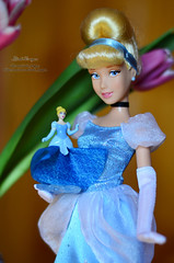 Princess 12 (Lindi Dragon) Tags: doll dolls disney kinder cinderella disneystore disneyprincess