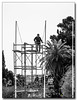 20080319_1253_2 (gabrielpsarras) Tags: park bw tree monument stand blackwhite downtown athens pole greece historical worker zappeion αθήνα zappeio ζάππειο