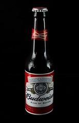 Budweiser Still Life. Black background. (Maganjoh) Tags: red food beer blackbackground nikon beverage drinks alcohol budweiser lager kingofbeers sigma1750f28 nikond7000