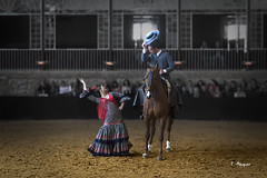 El encanto de la gitana (E.Marquez) Tags: caballo danza cordoba ecuestre lidia baile flamenco gitana
