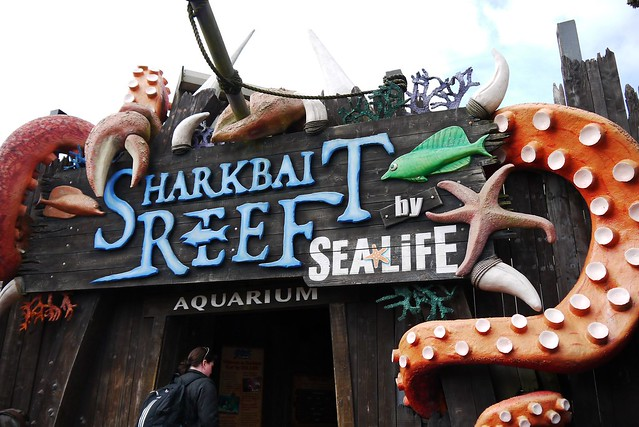 Sharkbait Reef
