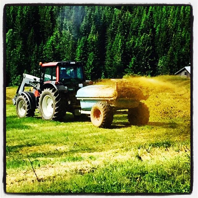 Sommer, sommer, sommer #sommer #bonde #traktor...
