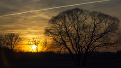 2016-04-02_08-52-00 (wiktor_furmaniak) Tags: trees sunset sky minolta sony silhoutte 70210mm flickrsbest passionphotography simplysuperb naturecomposition absolutelyperrrfect alpha65