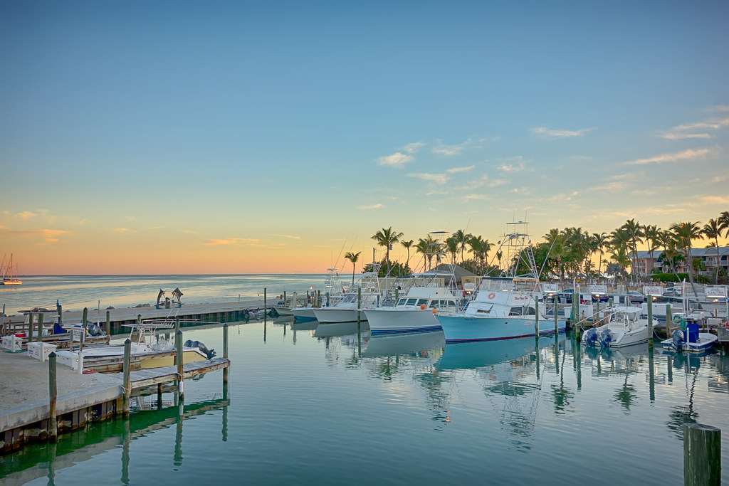 The world 39 s newest photos of green and largo flickr hive for Florida keys fishing resorts