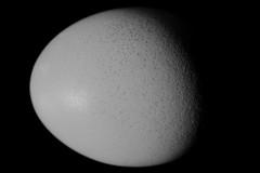 Waning gibbous egg | Abnehmendes Ei (rainbowcave) Tags: egg shell ei schale