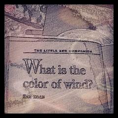 koan (LauraSorrells) Tags: square moody wind koan zen squareformat question sutro wordplay iphoneography instagramapp uploaded:by=instagram thecolorofthewind