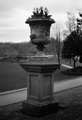 Urn (Man with Red Eyes) Tags: park flowers film monochrome urn analog blackwhite tulip preston hp5 nikkor ilford millerpark nikonf6 50mmf12 silverhalide filmisnotdead td201