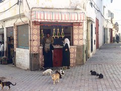 Daily life (FAO of the UN) Tags: old town morocco azemmour