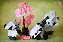 Cherry Blossoms in Origami Panda Land (Oriland) Tags: toronto ontario canada canon paperart eos rebel book spring origami panda colours textures cherryblossoms publication 2016 おりがみ 折り紙 pandastic canonphotography paperdesign oriland noglue pandalicious 750d orilandcom katrinray yuriandkatrinshumakov pandorable t6i origamibyyurikatrinshumakov pandamonday origamipandafamily origamipandamondayfun origamibabypanda pandaful oripandas origamipandafun springinorigamipandaland