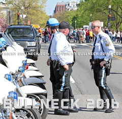 USPP, Apr. '16 -- 54 (Bullneck) Tags: washingtondc spring uniform gun cops boots police harley toughguy nationalmall motorcycle americana heroes macho usparkpolice cherryblossomparade breeches motorcyclecops uspp motorcyclepolice motorcops biglug bullgoons federalcity