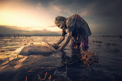 _DSC9006-wm (patlawhl) Tags: sunset bali seaweed beach indonesia character heartwarming oldlady reminder tough challenging strenght perserverance 1635mm inlife betterday sonyalpha mirrorless patlaw sonya7r nusaprenida