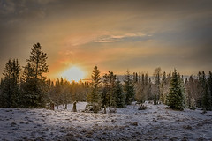 April Sunset (Troutfisher266) Tags: light nature norway rural landscape spring nikon