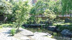 #7958 shrine garden (Nemo's great uncle) Tags: garden  yushima  tky   bunkyku yushimatenji