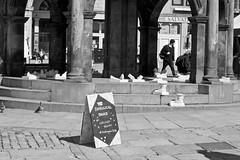 Look Again Saturday 30th April (Gregor_McAbery) Tags: art look culture again aberdeen