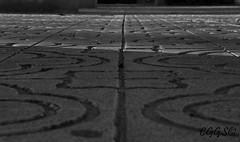 """(""""CGGS Photography"""" on Facebook) Tags: light shadow blackandwhite bw byn blancoynegro luz photography lights luces nikon shadows floor fotografia sombras suelo colourless airelibre monocromático d90 monocromatico incoloro cggs nikond90"""