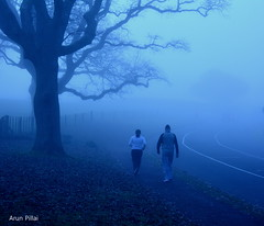 Misty morning (Arun S Pillai) Tags: park morning blue trees newzealand people nature weather misty outdoors cool couple moody auckland