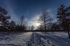 Tracks on the Trail (MattPenning) Tags: winter sky snow clouds shadows pentax tracks sigma potd trail rays k5 springfieldillinois skyclouds mattpenning kmount lakespringfield sigma1020mmf456exdc mattpenningcom abrahamlincolnmemorialgarden penningphotography justpentax pentaxk5 winterlakespringfieldsnowice