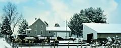 Happy Fence Friday (bjebie) Tags: trees ohio house snow barn rural fence cattle cows farm fences wintertime corral portagecountyohio suffieldohio stateroute43 fencefriday happyfencefriday rufenerfarm