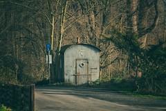Alte Blechhtte... (hobbit68) Tags: old canon rooftops outdoor alt frankfurt main ruine sonne bltter baum gebude sonnenschein dcher