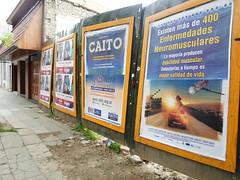 SAM_0140 (adm.argentina) Tags: caito 30aos vapblica