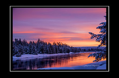 Henry's fork Island park Idaho (Pattys-photos) Tags: park winter sunrise island idaho henrysfork