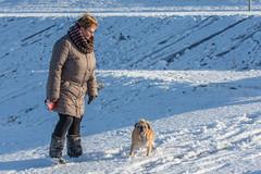 20160116-3223 (Sander Smit / Smit Fotografie) Tags: winter sneeuw delfzijl sneeuwpret slee winterweer