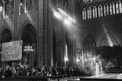 Paris, Notre Dame (Luc Mercelis) Tags: france church blackwhite blw drama lightroom silverefex nex3