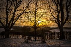 Kreuz im Sonnenuntergang (Fooß) Tags: schnee winter berg natur bank kreuz sonne wald untergang hecke hunsrück