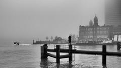 Mist 8 (Hans de Meij) Tags: blackandwhite mist monochrome fog port harbor rotterdam hotelnewyork watertaxi rijnhaven