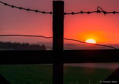 P22-0219b (horacio marin) Tags: sunset sun atardecer campo tranquera