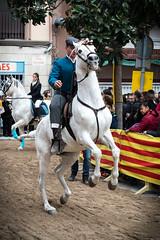 Tres Tombs Ripollet 2016 (@ossianbg) Tags: horses caballos catalunya burros 2016 ripollet stantoni trestombs sanantonioabad 3tombs santantoniabad elstrestombs