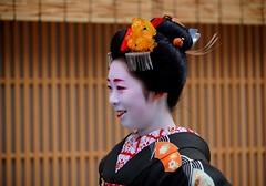 (-8 (nobuflickr) Tags: japan kyoto maiko geiko       miyagawachou  20160118dsc08983
