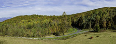 panoramic view of Mile #6 on the Blue Ridge Parkway (TAC.Photography) Tags: virginia blueridgeparkway humpbackgap
